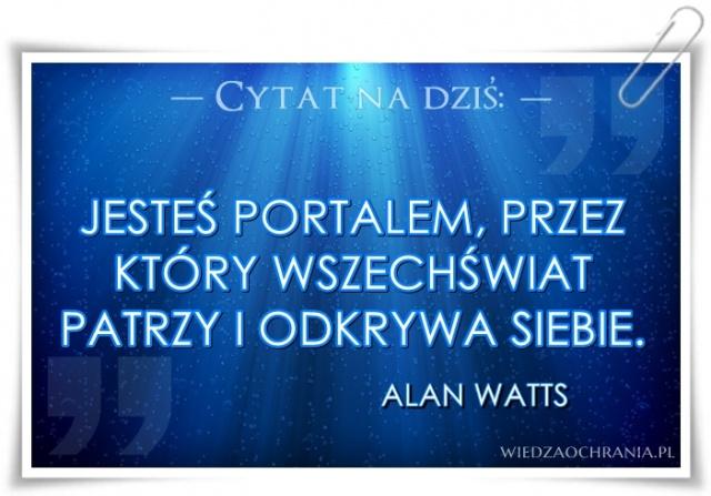 cytat 21 - Watts.jpg