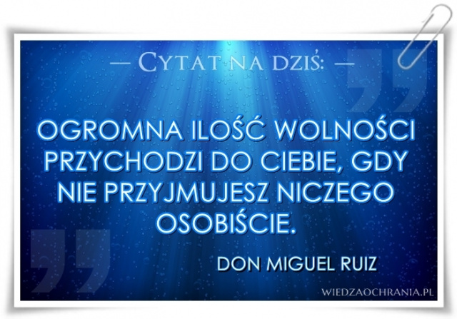 cytat 24 - Ruiz.jpg